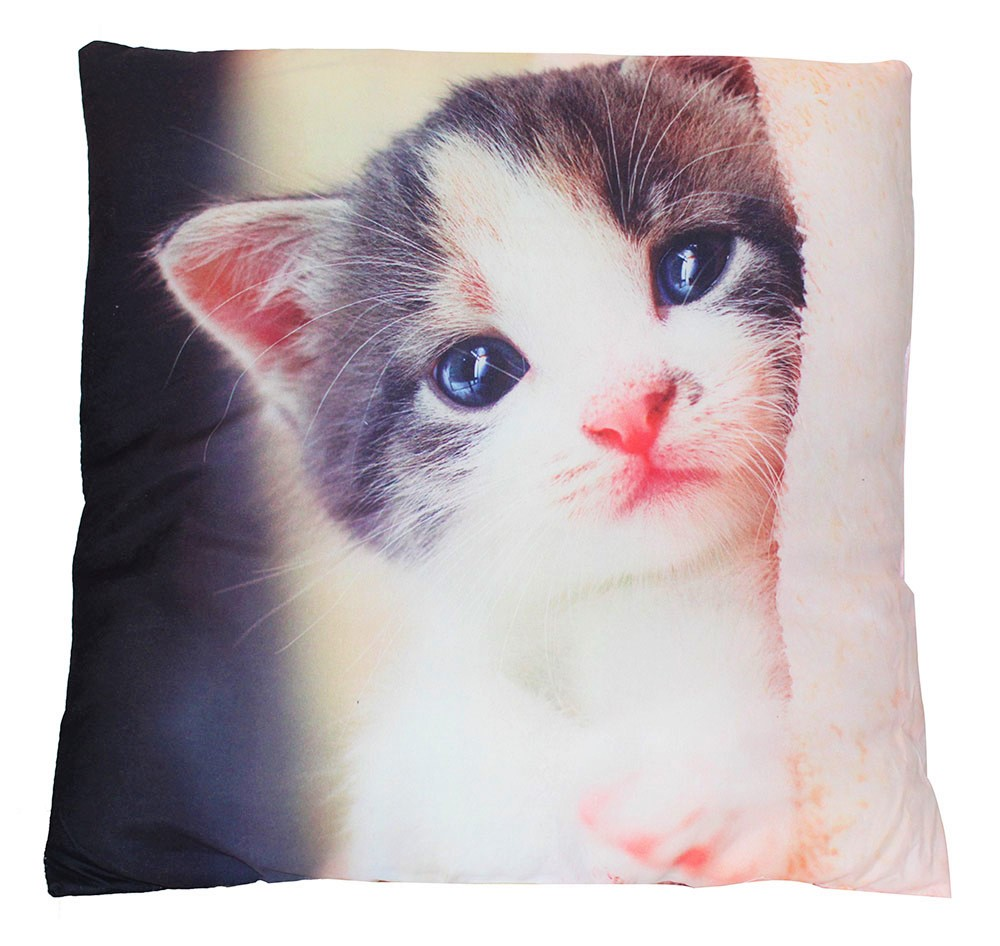 Kissen mit Motiv Kitten zweiseitig bedruckt 40 x 40 cm